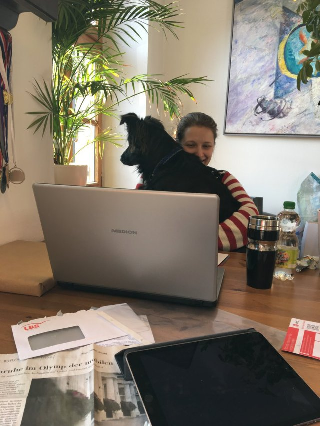 sapnagroup @sapnagroup Jan 26 Our latest two team members: Karina and Lou the office dog ;-)