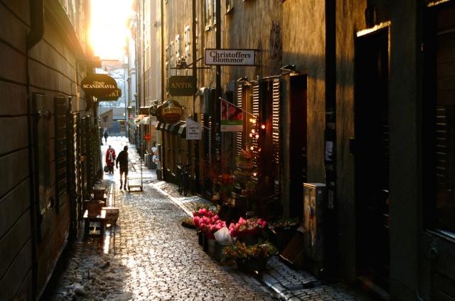 Gamla stan (Stari grad), centar zbivanja Stokholma od srednjeg veka do danas