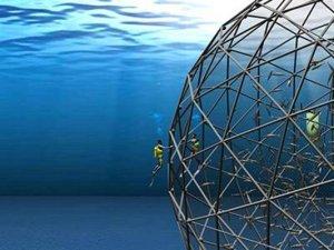 Akva-farme: ribe se danas već hrane biljnim proteinima