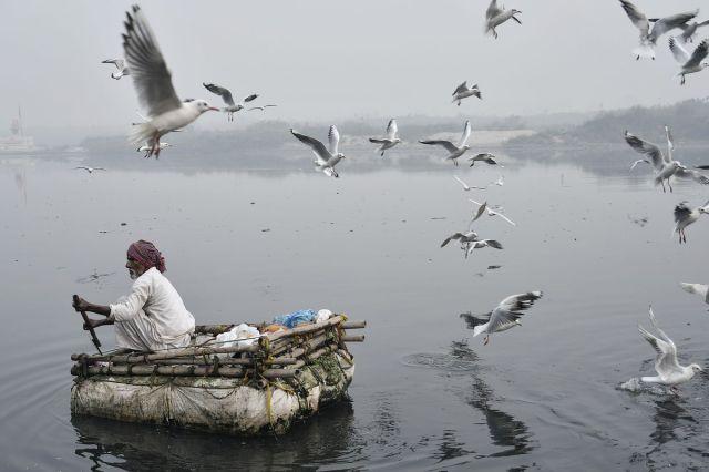 Čovek vesla rekom Jamune, utonule u smog obližnjeg Nju Delhija, 11. novembra (Anindito Mukherjee/Bloomberg)