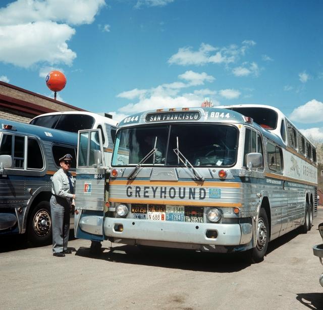 Nekadašnji pojam putovanja autobusom, američki Greyhound, danas je samo prošlost (DPA)