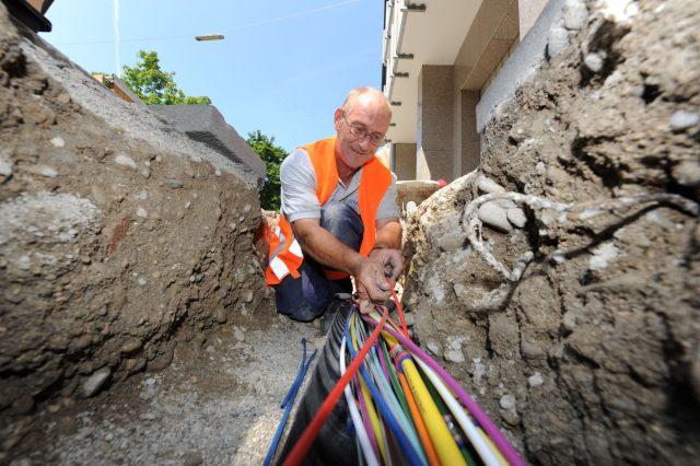 Spektar duginih boja uvezan u snop digitalnih kablova. Foto: Picture Alliance