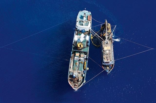 Riferi prebacuju teret na manje brodove, jer su takse za vozarinu daleko niže ako se primopredaja izvrši na moru tj na vodi, nego na kopnu