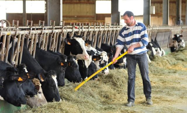 Poljoprivrednicima u pogođenim oblastima sada je potrebno obećanje kreatora evropske politike da neće biti prepušteni sami sebi u bavljenju problemima izazvanim ekstremnim vremenskim uslovima (Photo: Evropski parlament)