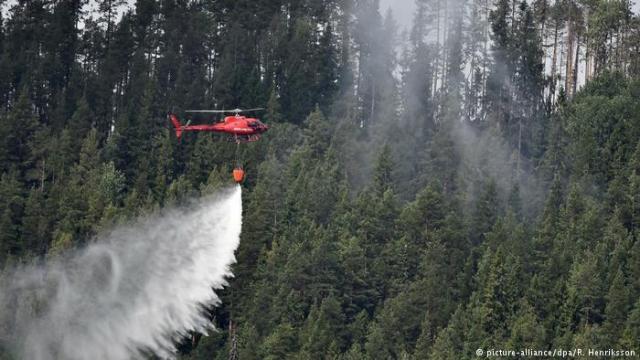 Vrelina ovog leta nije zaobišla ni Letoniju, gde su na zapadu divljali požari