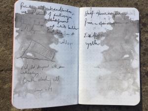 Pećinske beleške Roberta Mekferlejna